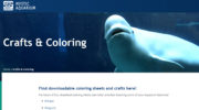 Mystic Aquarium offering free online resources for fun & learning