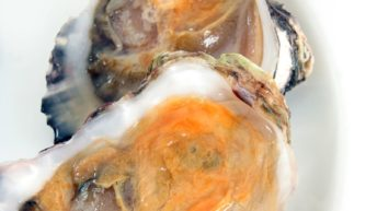 CT lawmakers urge USDA to reconsider decision preventing shellfish farmers from receiving financial relief during COVID-19